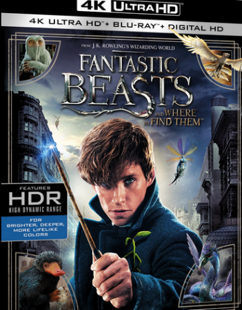 Fantastyczne zwierzęta i jak je znaleźć / Fantastic Beasts and Where to Find Them (2016) MULTi.2160p.UHD.Blu-ray.HDR.ATMOS.7.1.x265-DENDA